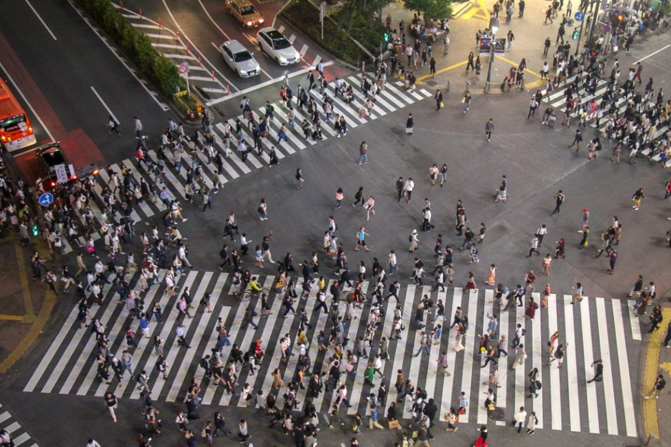 View of Shibuya Crossing from Mags Park in Tokyo, Japan