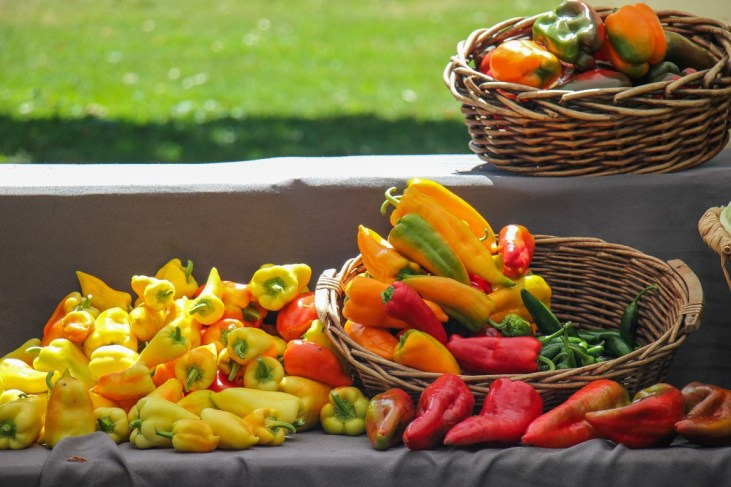 Fresh Peppers for Sale, Vancouver WA Farmers Market