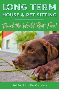 Long Term House and Pet Setting by JetSettingFools.com