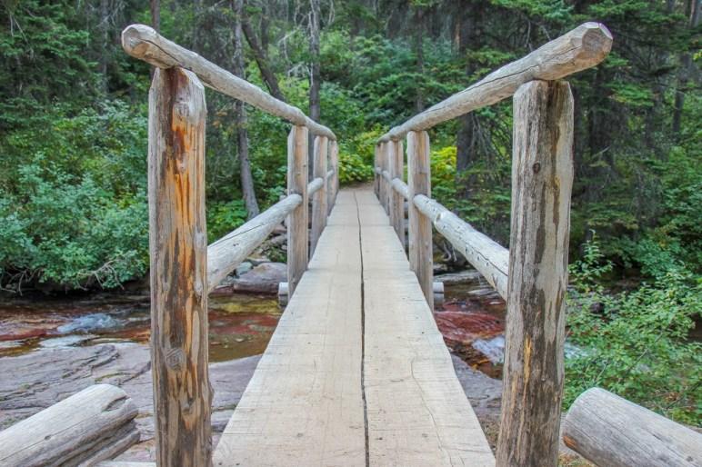 Foot Bridge below Virginia Falls Trail, Glacier National Park, Montana