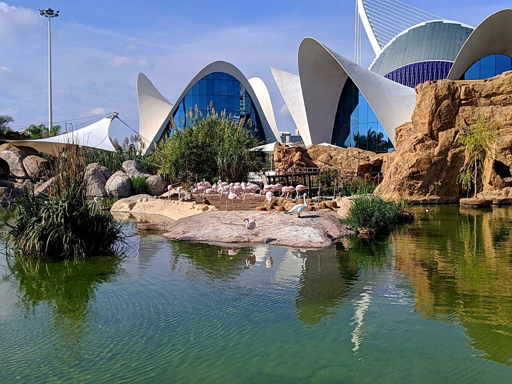 Valencia aquarium in Spain