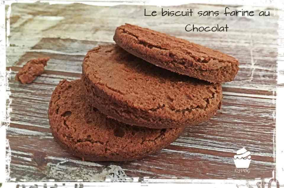 biscuit-chocolat-sansfarine