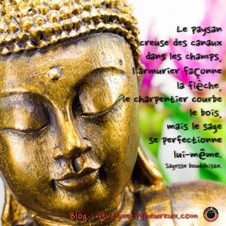 Sagesse bouddhiste - Développement