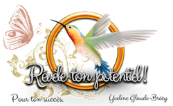 Logo Yveline Colibri-Papillon Modèle 250