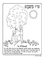 Tu B'shevat Coloring Pages : b'shevat, coloring, pages, Jewcology, Coloring, Pages, (Printable)