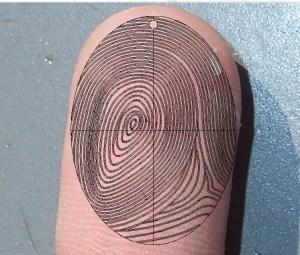 Fingerprint (3)