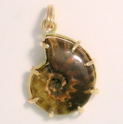 Beverly's Ammonite Fossil Pendant