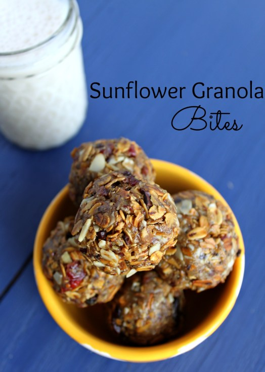 Sunflower granola bites homemade Jewhungr