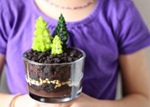 tu b'shvat chocolate dirt cake jewhungry kosher food