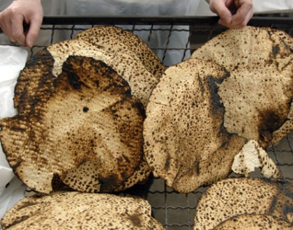One Minute Insight: What Matzah Can Teach Us About Seizing The Day
