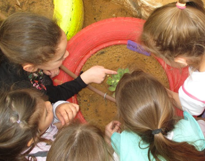 This Organization Teaches Charedi Kids To Protect The Environment