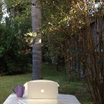 Sitting in my Sukkah…