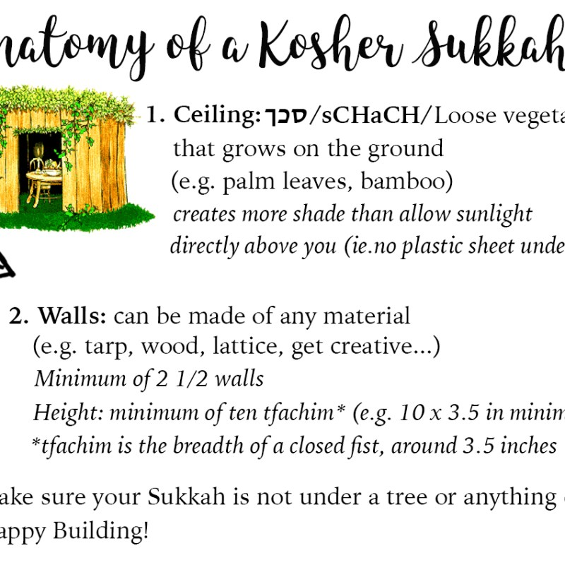 How to Build a Sukkah? || ¿Cómo construir una Sukká?