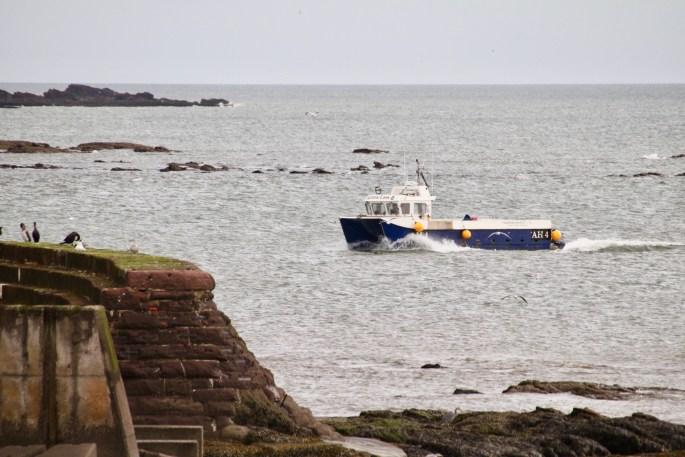 Bonnie Lass II returning to Arbroath harbour by Jez Braithwaite