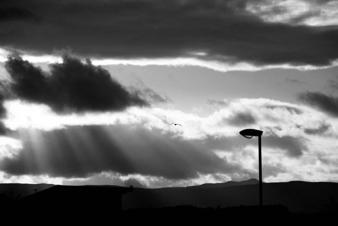 Crepuscular rays & a street light