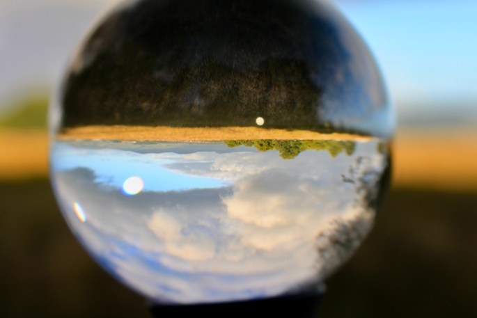 Palacerigg through a lensball