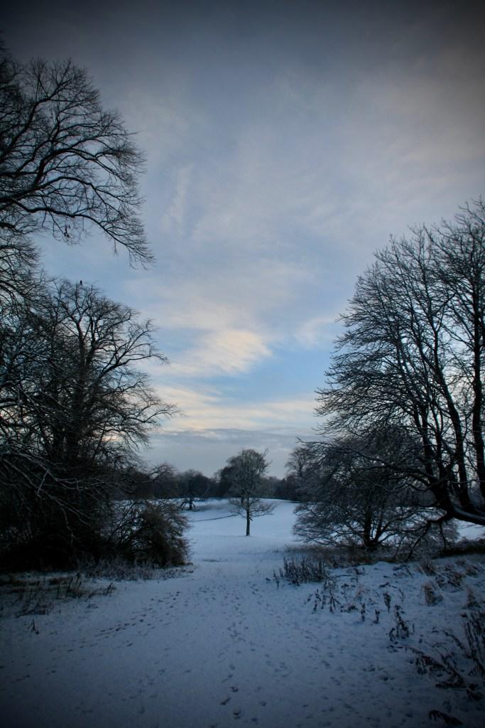 Cumbernauld House Park