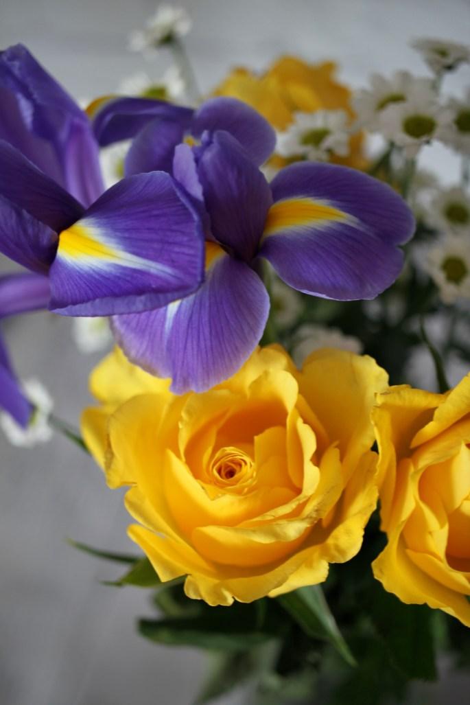 Iris & a rose