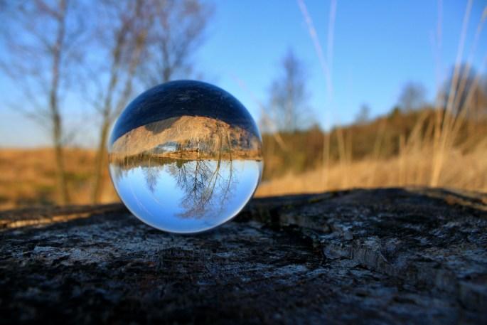 Lensball at Palacerigg Country Park