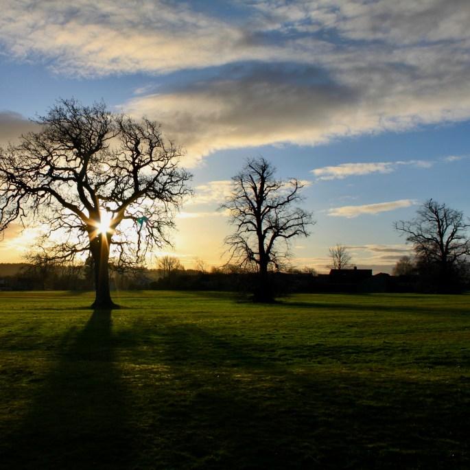 Sun & tree on left
