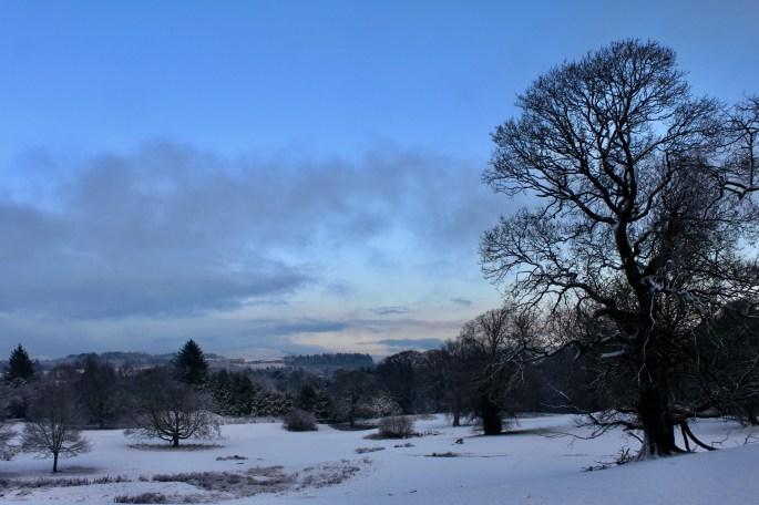 Cumbernauld House Park in the snow