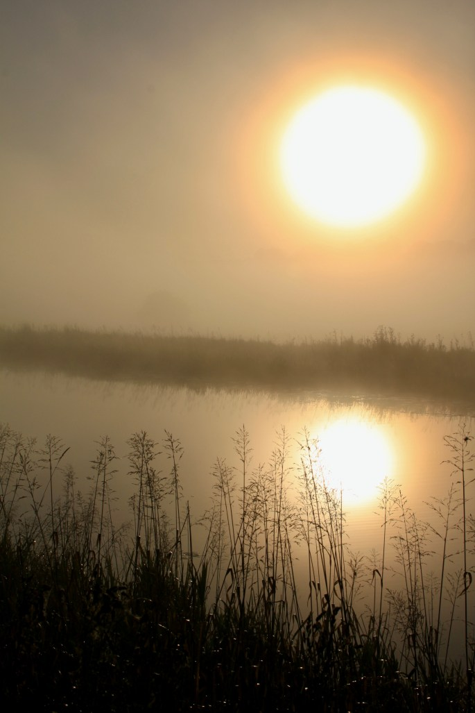 Misty morning along the Forth & Clyde Canal