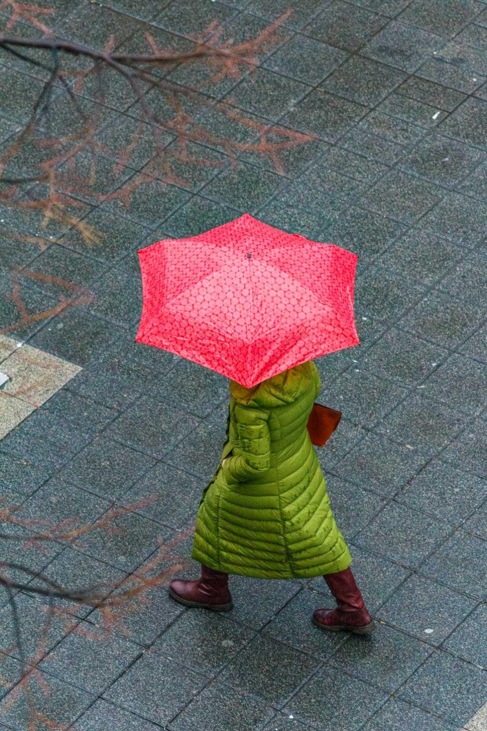 27_feb-umbrellas-1