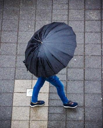 27_feb-umbrellas-2