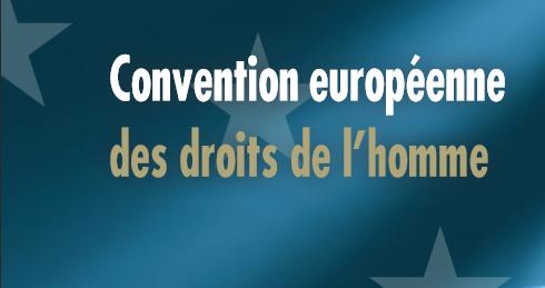 [biblio.jfak] – Les obligations positives en vertu de la Convention européenne des Droits de l'homme – Ouvrage en français, anglais, roumain, turc
