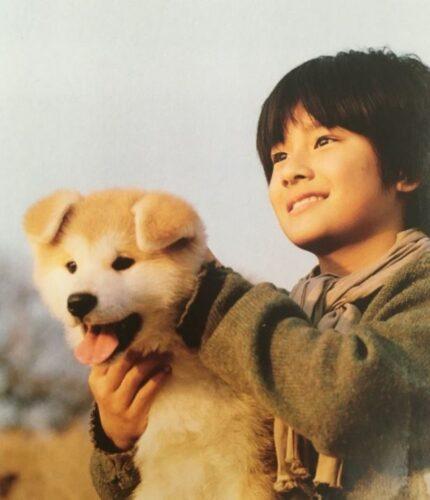 森本慎太郎 ペット