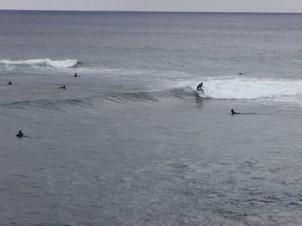 Brave/crazy surfers