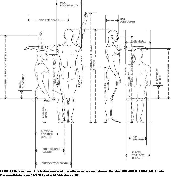 List of Synonyms and Antonyms of the Word: Anthropometry