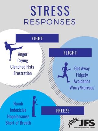 Fight Flight Freeze Response