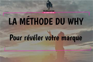 la-methode-du-why