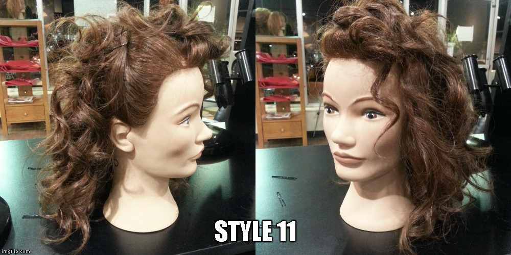 Style 11 Meme