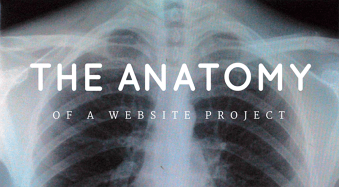Anatomy of a Website Project