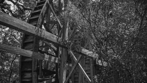 Bale Grist Mill - Napa California