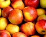 Apple [एप्पल] – सेब [Seb] online fruits delivery in jhansi