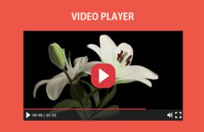 HTML5 video player with play, forward, rewind & pause buttons