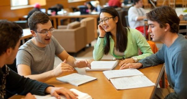 Why is it important to Study in Groups?