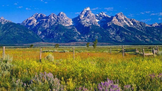Image result for jackson hole wyoming