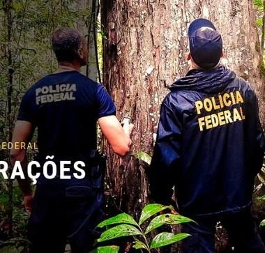 PF deflagra operação contra a extração e comércio ilegal de madeira em Rondônia e outros 7 estados