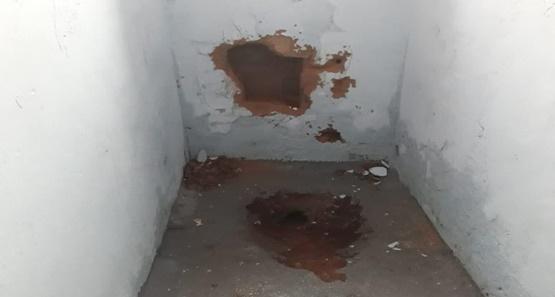 Agentes encontram escavações em celas do Urso Branco e evitam fuga