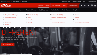 Navigating the UFC Gym Website is very simple.