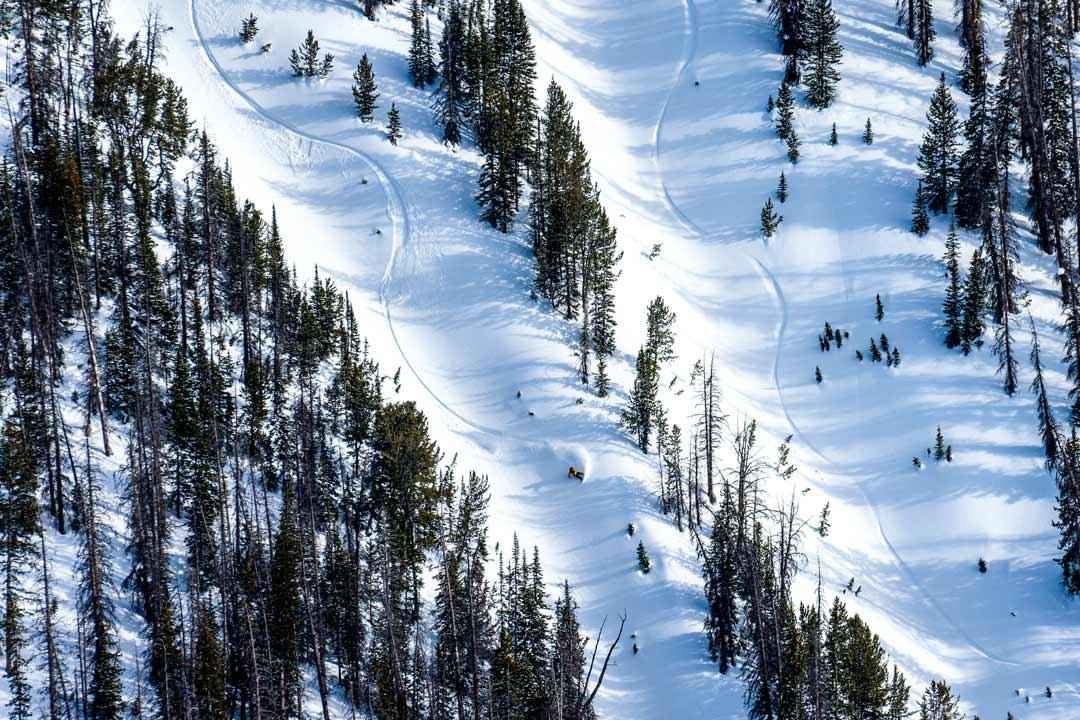 snowboarding. 19-20 JHSM. Bryan Iguchi, Wyoming. Photo: Ming Poon