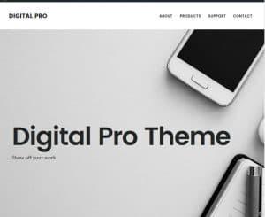 digitalpro01