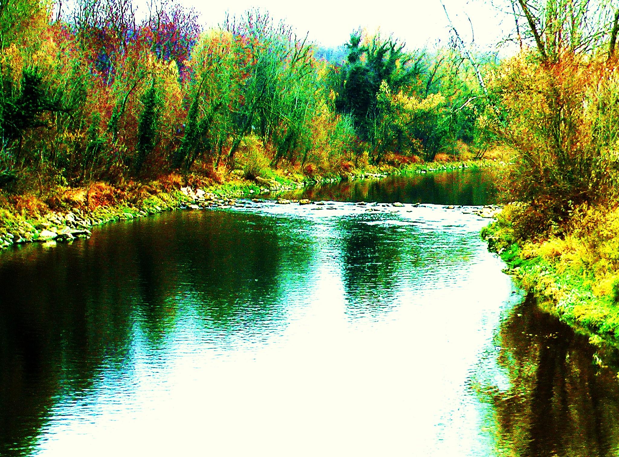 הנהר זורם