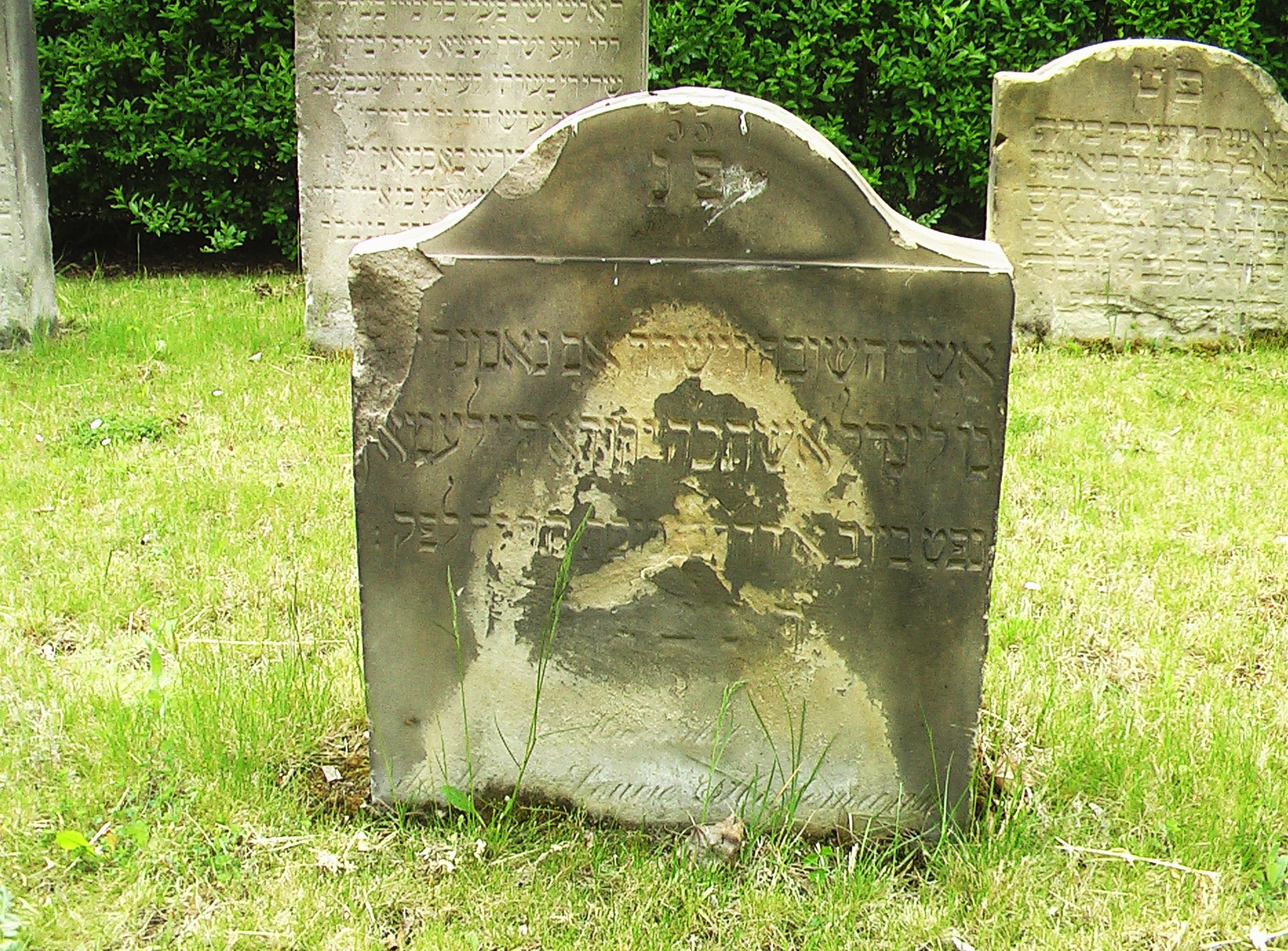בית קברות | Jüdisch Historischer Verein Augsburg | Page 8