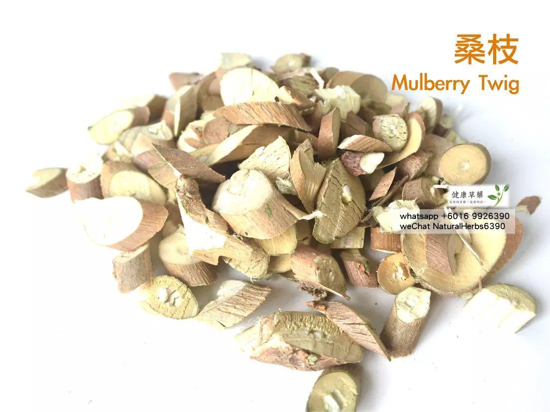 【關節、風濕、骨頭健康】桑枝 Mulberry Twig