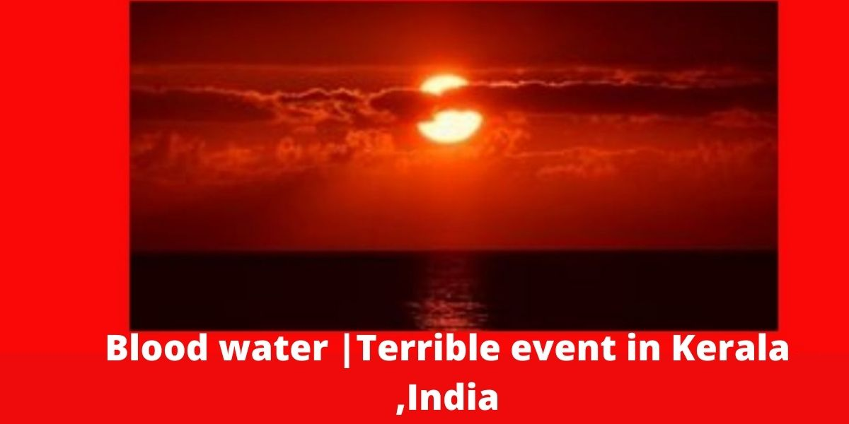 Blood water |Terrible event in Kerala ,India